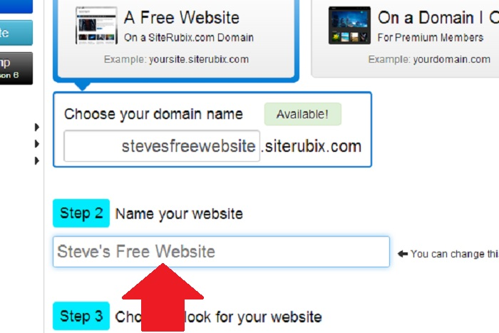 Enter your website name.