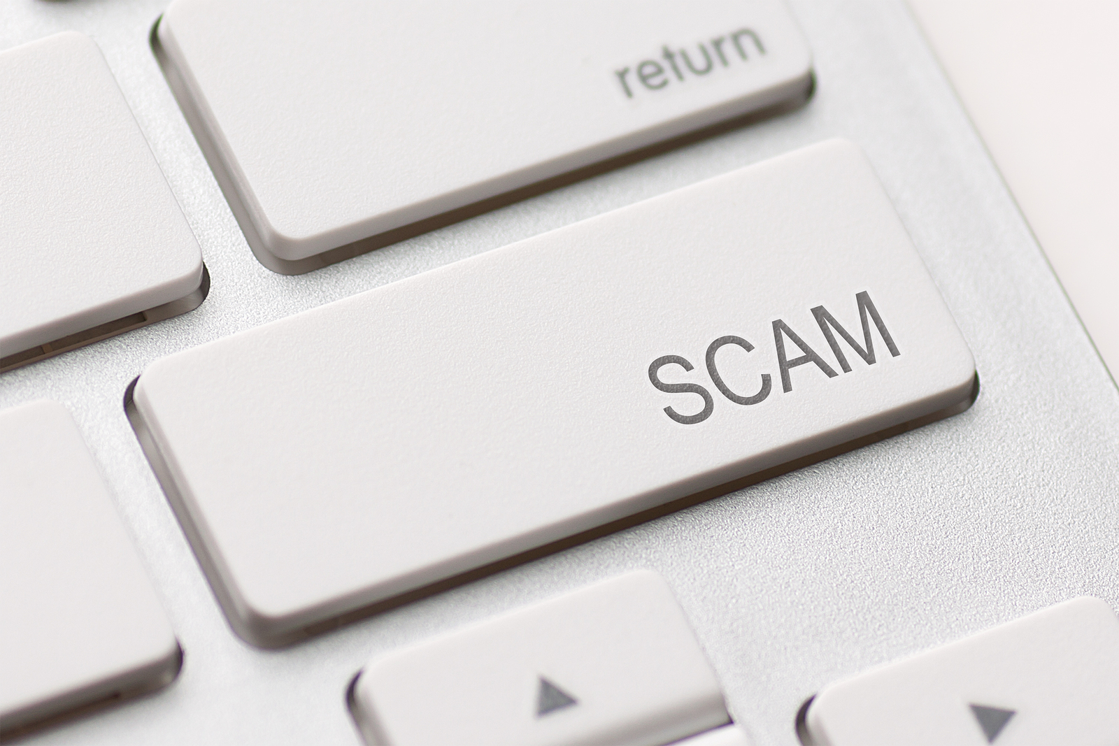 Mlm Scams And How An Internet Marketing Training Program